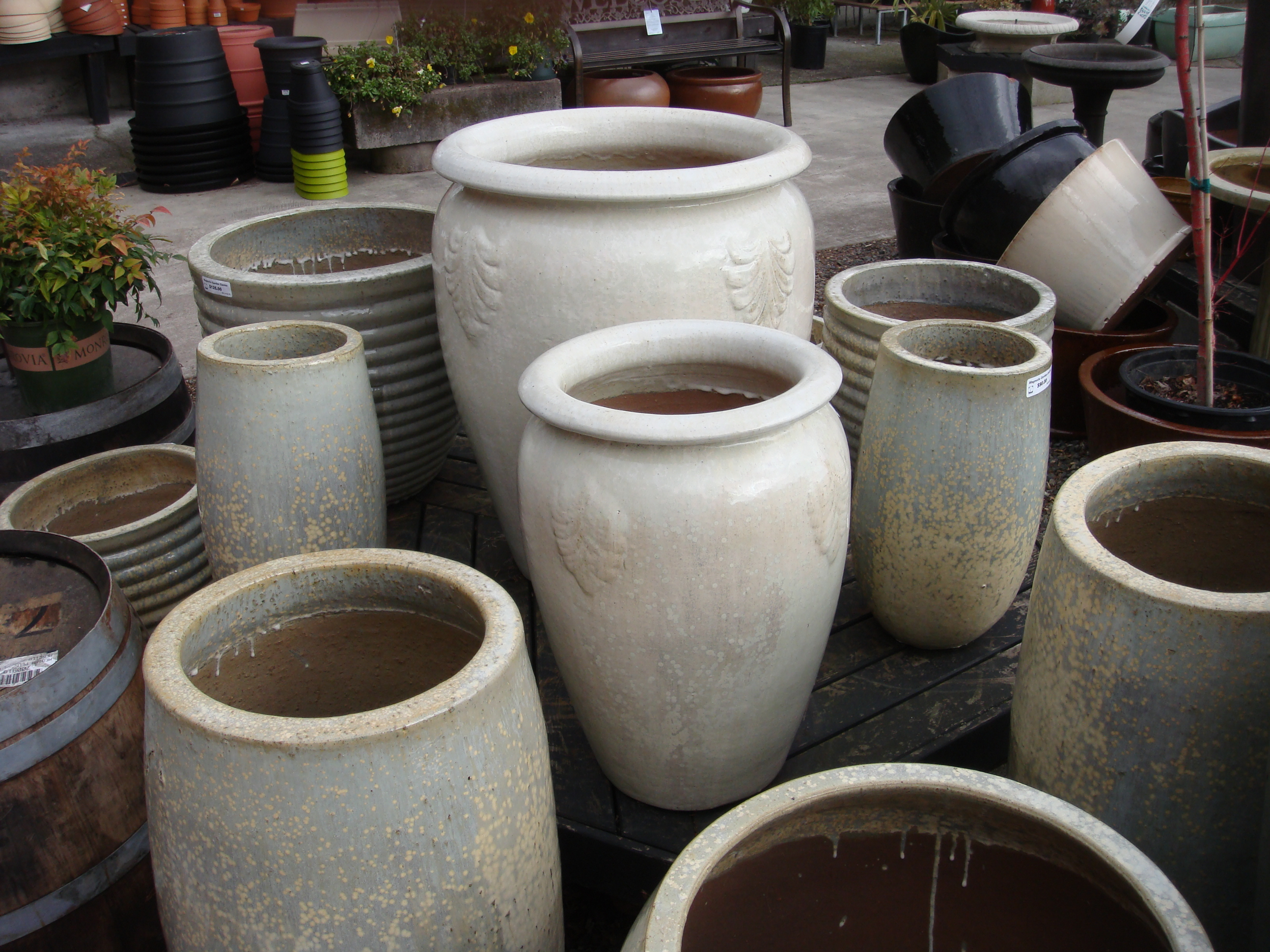 ceramic plant pots magnolia garden center seattle wa containers and pots 30025